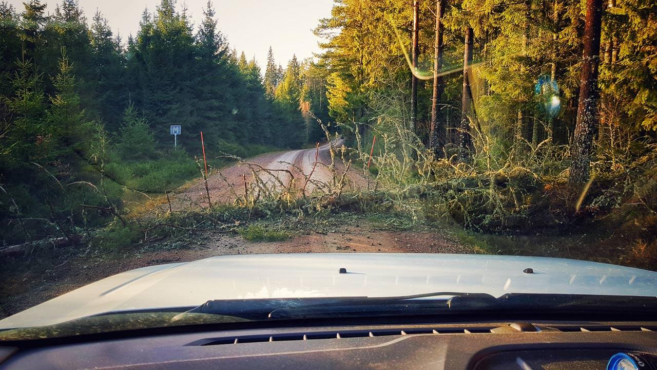 Sich den Weg in Schweden mit dem Pickup freiräumen