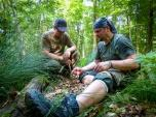 Team-Survival-14741