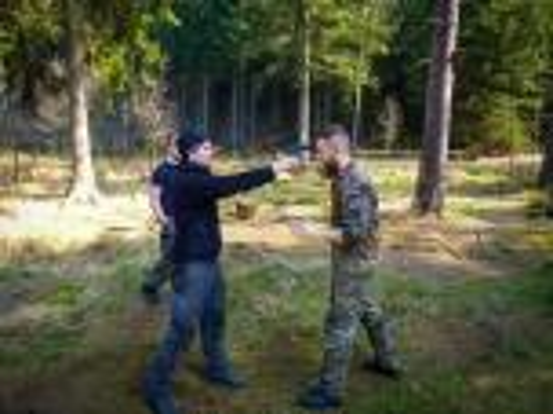 Team-Survival-4408