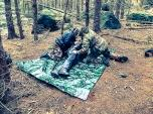 Team-Survival-4691