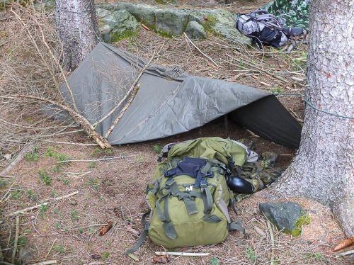 Team-Survival-5421