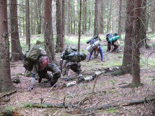 Team-Survival-5461