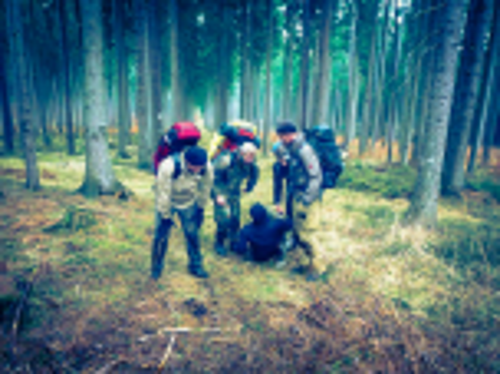 Team-Survival-5554